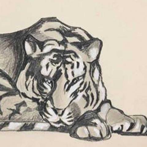 Tigre couché, 1923.